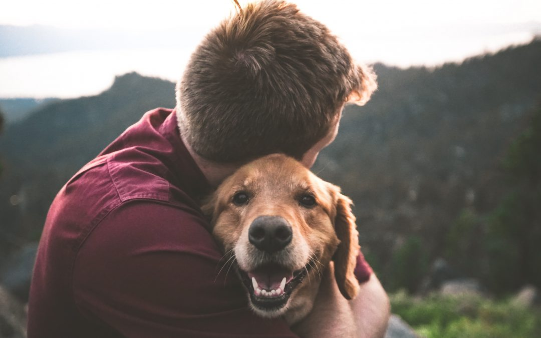 How Owning a Pet Can Benefit Your Mental Health